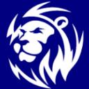 View Service Offered By Lion Digital Marketing Co Ltd
