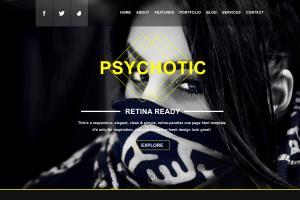 Portfolio for Professional Website Design