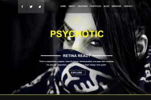 Portfolio for Professional Website Design