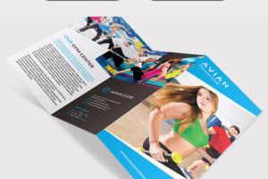 Portfolio for Professional Brochure(tri-fold brochure)