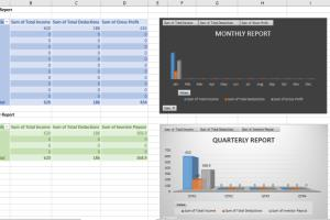 Portfolio for Advanced Excel Reports with Pivot Table