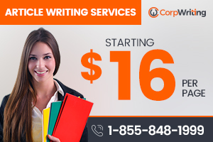 Portfolio for Article Writing Services