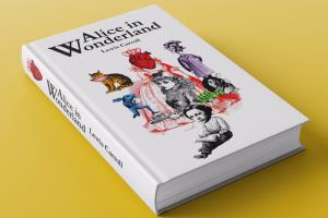 Portfolio for Design artistic cover for your book