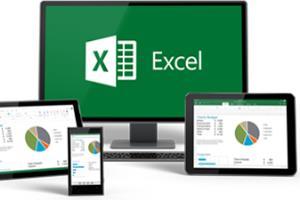 Portfolio for Excel Data Manipulation