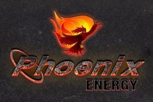 Portfolio for I well design your professional logo