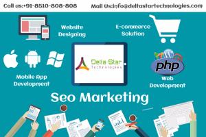 Portfolio for Internet Marketing (SEO/SMO/PPC)