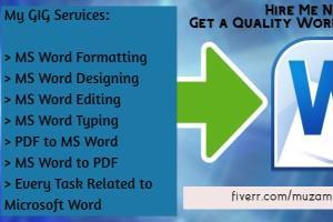 Portfolio for Professional Microsoft Word Task