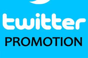 Portfolio for Twitter Promotion