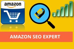 Portfolio for Amazon seo expert