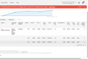 Portfolio for Manage And Optimize Adwords PPC Campaign