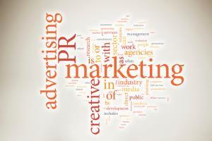 Portfolio for Communications Plan
