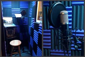 Portfolio for Professional Voiceover for your Projects