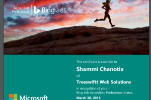 Portfolio for Bing ads Services