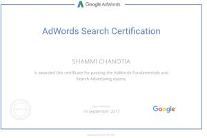 Portfolio for Certified Adwords Expert