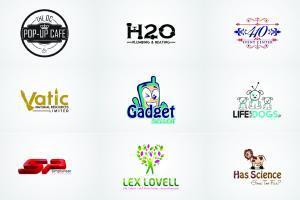 Portfolio for Business Logo Custom Logo & Illustration