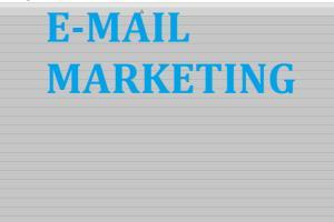 Portfolio for Professional Digital Marketer