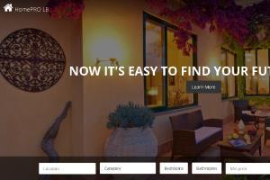 Portfolio for E-commerce solution expert