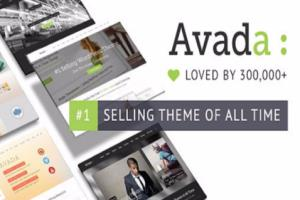Portfolio for Avada WordPress Theme Customization