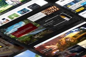 Portfolio for Website design and development from zero