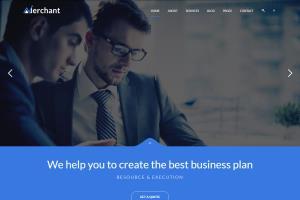 Portfolio for i will copy,clone or redesign website