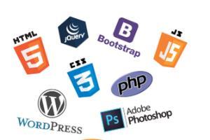 Portfolio for Design & Develop  Wordpress website