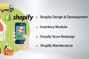 Portfolio for Shopify store development service
