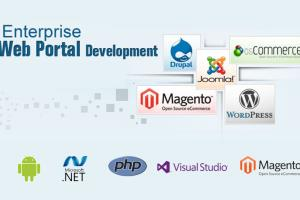 Portfolio for Enterprise Portal Development