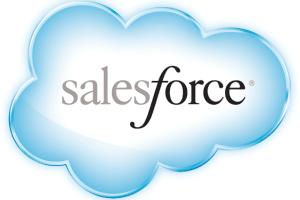 Portfolio for Salesforce Support Assistant