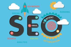 Portfolio for Search Engine Optimization   SEO