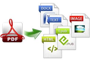 Portfolio for Convert PDF to Word/Excel Document