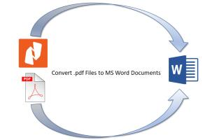 Portfolio for Convert PDF Files to MS Word or Excel