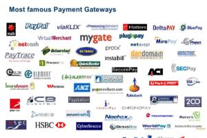 Portfolio for Payment Gateway Integration