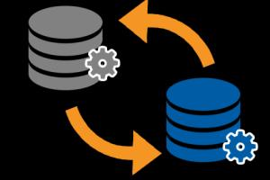 Portfolio for DataBase management