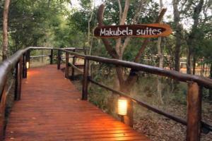 Portfolio for tourist destinations expert