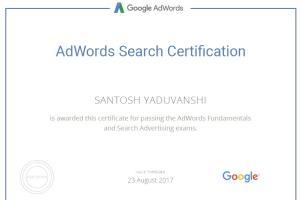 Portfolio for Online Advertising Professional