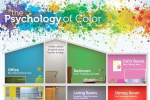 Portfolio for Infographic Design