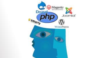 Portfolio for Wordpress Development and customization