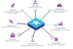 Portfolio for Hire API Development Developer