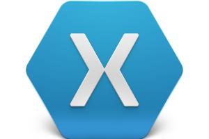 Xamarin Hybrid app Expert
