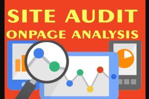 Portfolio for Advance SEO Audit Report With Recommenda