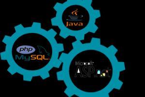 Portfolio for Software Testing and Maintenance