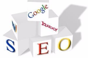 Portfolio for Search Engine Optimization(SEO) Services