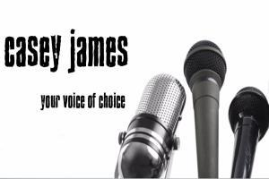 Portfolio for Voiceover/Voice Acting/Voice Talent