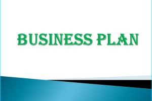 Portfolio for Business Plan