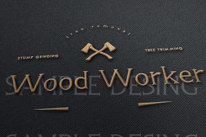 Portfolio for I will create a awesome logo in you want