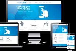 Portfolio for WordPress Web Design