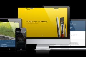 Portfolio for Wordpress website development