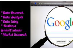 Portfolio for Data Entry & Data Research