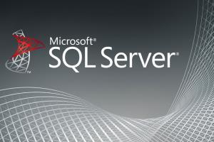 Portfolio for Microsoft SQL Server Development | SSIS