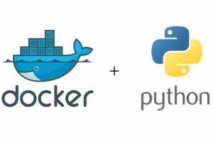 Portfolio for Developer in Python/Django/React/Docker